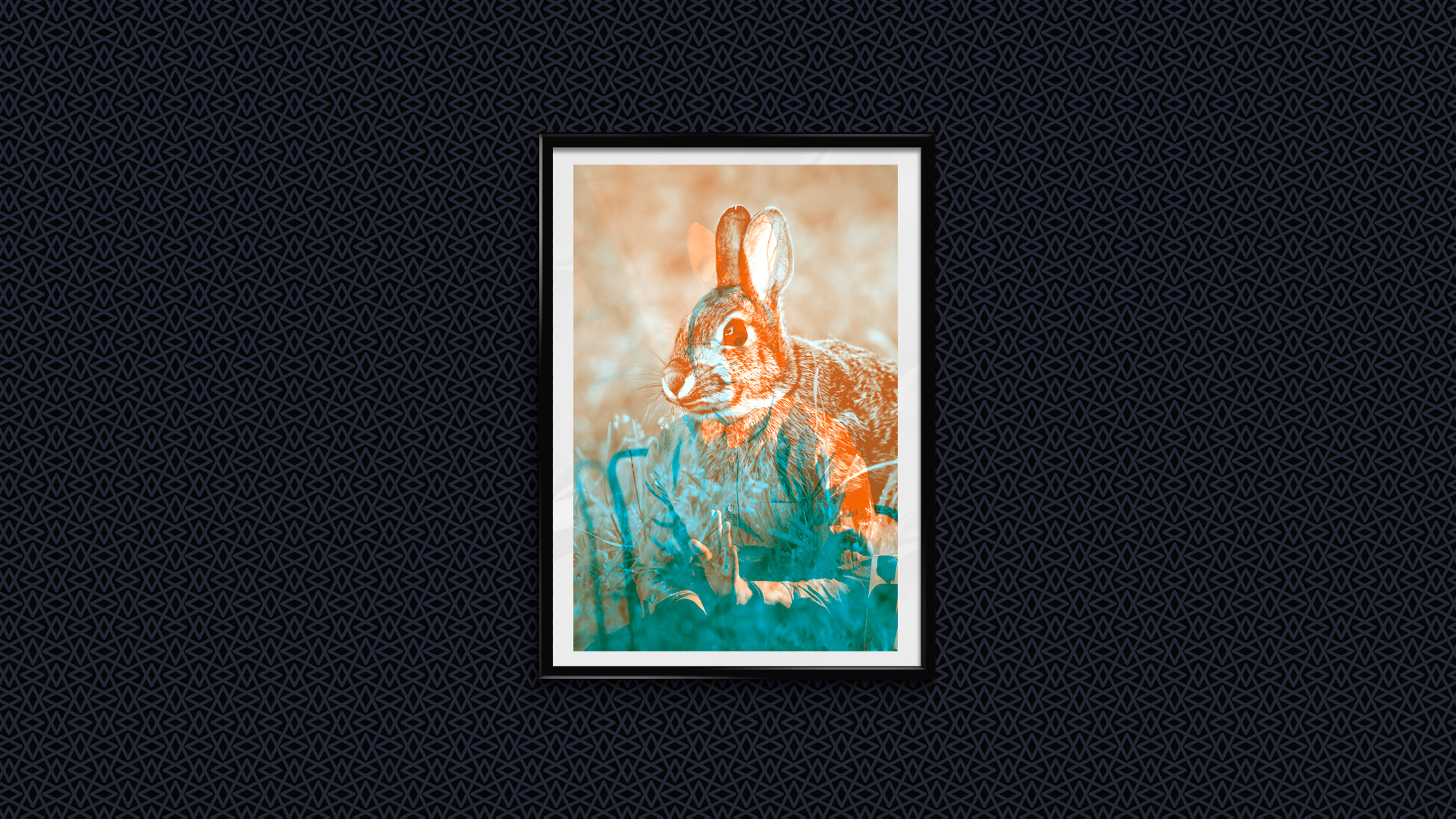 _EDITIONS-APPART_affiche_lapin_2