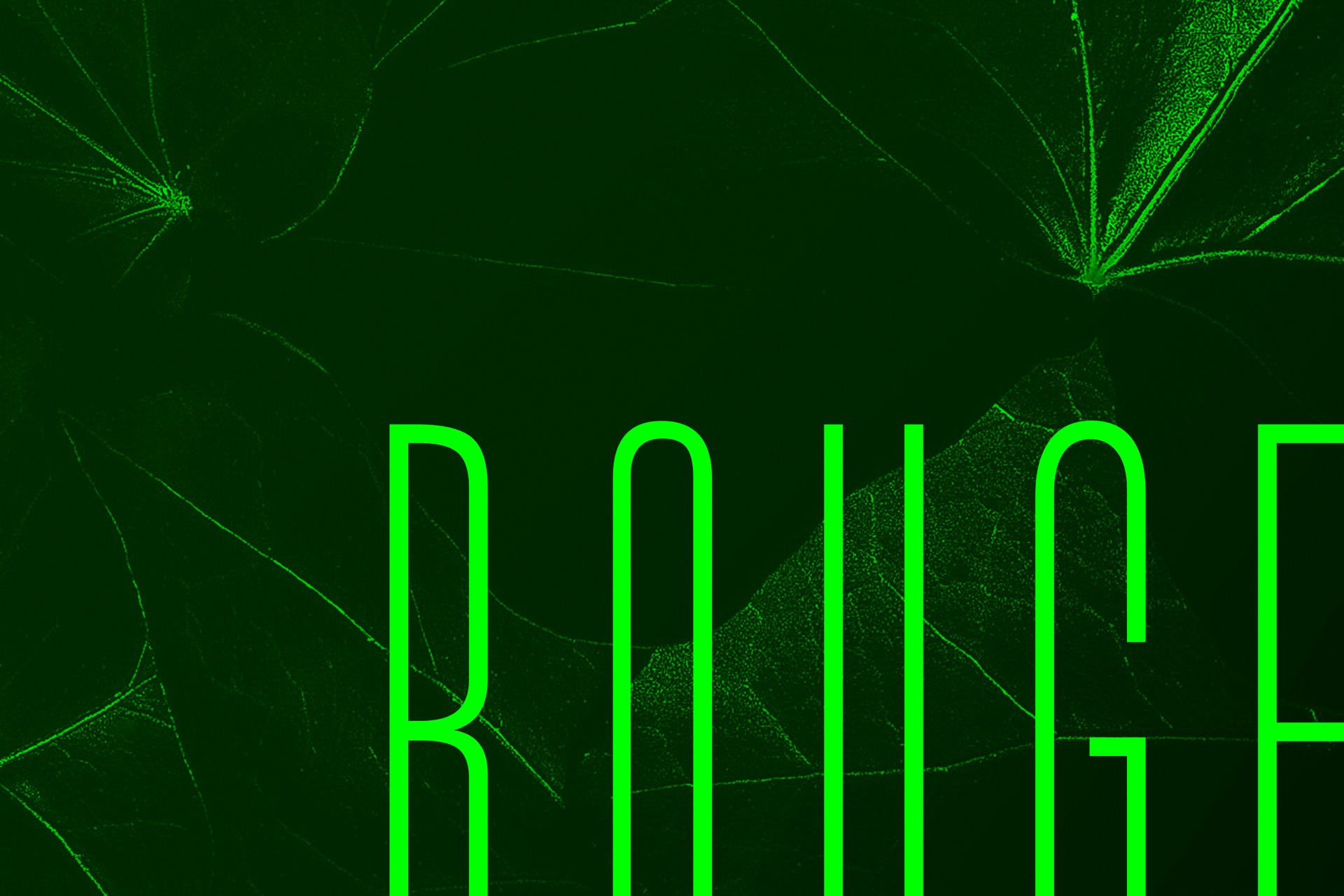 _EDITIONS-APPART_affiche-a2-vert-fluo_07_rouge_2